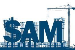 Управление корпоративным программным обеспечением - Software Asset Management (SAM)